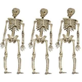 3 squelettes à suspendre