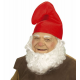 Chapeau de nain rouge