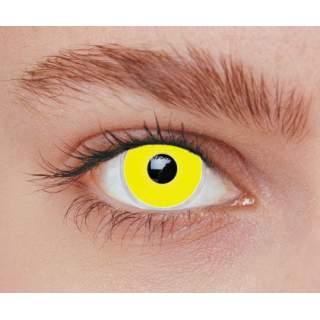 Lentilles iris jaune